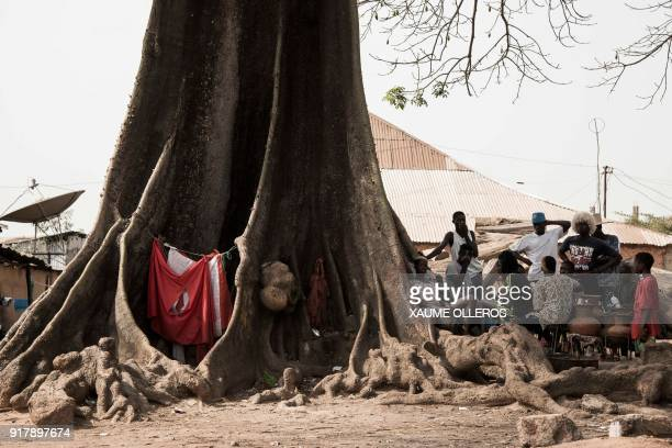 People shelter from the sun under a Baobab tree in the Mindara neighbourhood in Bissau on Mardi Gras on February 13 2018 / AFP PHOTO / Xaume Olleros