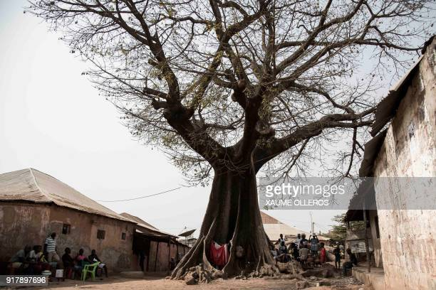 TOPSHOT People shelter from the sun under a Baobab tree in the Mindara neighbourhood in Bissau on Mardi Gras on February 13 2018 / AFP PHOTO / Xaume...