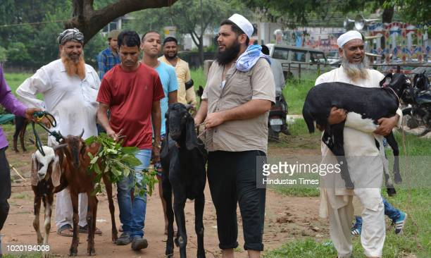 Livestock market full of goats and other sacrificial animals ahead of Eid alAdha at Benia Bagh on August 20 2018 in Varanasi India