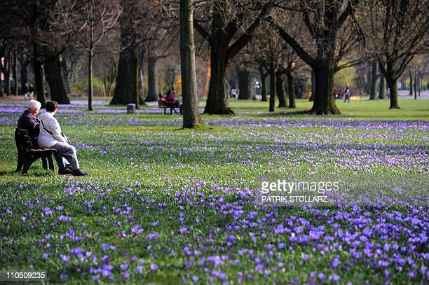 People sit on benches in a park where hundreds of crocus flowers bloom in the warm sunny weather in the western city of Duesseldorf on March 21 as...