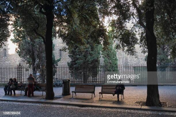 people sitting at benches under trees in the city center,bologna. - emreturanphoto stock-fotos und bilder