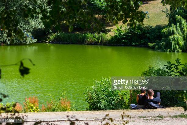 people sitting by lake against trees - colbing stock pictures, royalty-free photos & images