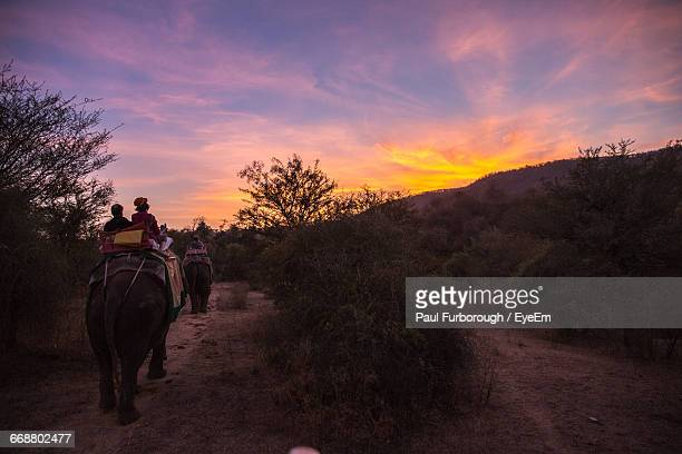 People Sitting On Elephants Against Sky During Sunset
