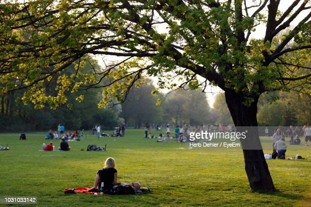 people sitting on grassy field at park - public park stock photos and pictures