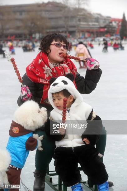 People skate with a dog on a frozen lake at Shichahai on February 10 2013 in Beijing China The Chinese Lunar New Year of Snake also known as the...