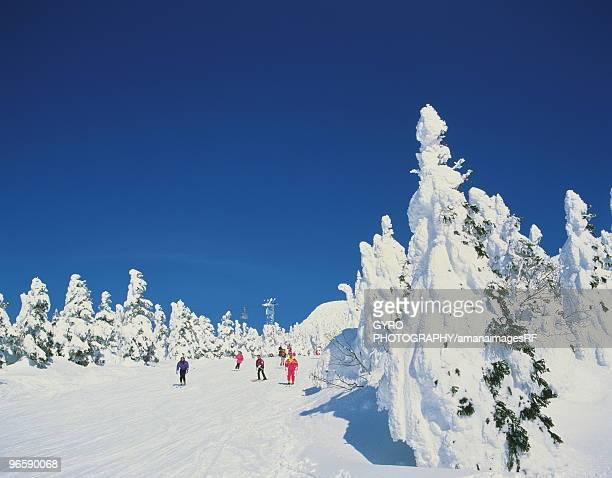 People skiing in mountain, Yamagata city, Yamagata prefecture, Japan