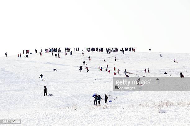 People sledging on Hampstead Heath in winter