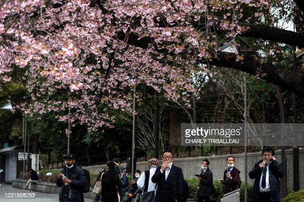 People smoke under a cherry blossom tree at Ueno park in Tokyo on March 12, 2021.