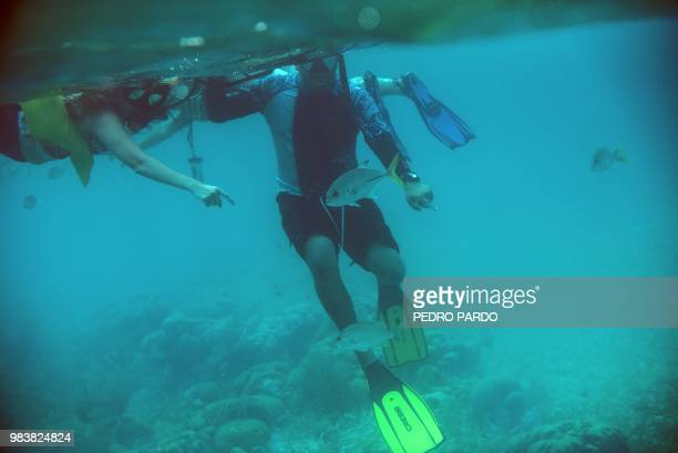 People snorkel at the Hol Chan Marine Reserve coral reef in the outskirts of San Pedro village in Ambergris Cay Belize on June 7 2018 Backed by...