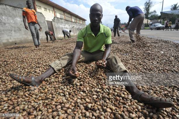 People spread cashew nuts in order to dry them on May 5, 2013 in Abdijan. The 2014 commercialisation of the cashew nut has been launched on February...