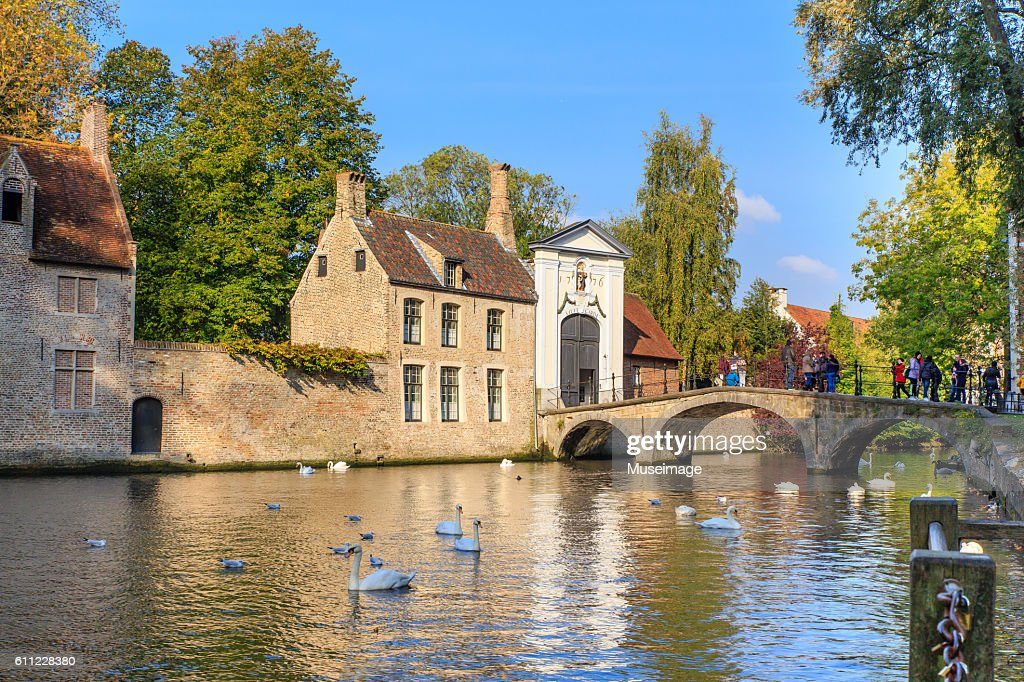 People stand on a bridge admiring a view of swans in the water amidst historic architecture in Bruges, Belgium : Stock Photo