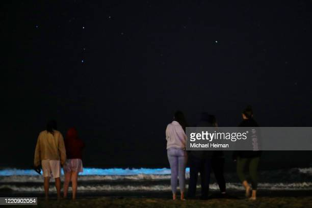 People stand on the beach at night to watch the waves glow blue due to bioluminescence on April 24 2020 in Newport Beach California Bioluminescence...