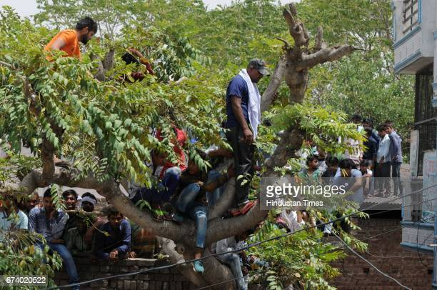 People stand on the roof and trees to see the leopard in Durga colony of Sohna on April 27 2017 some 25 km from Gurgaon India