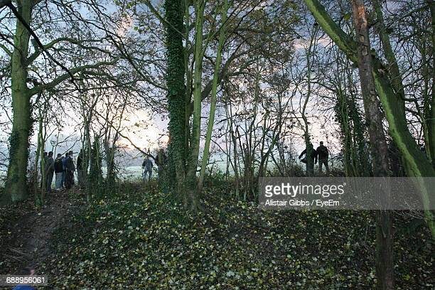 people standing amidst trees on field - hemel hempstead stock photos and pictures
