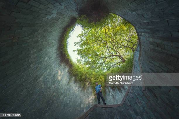 people standing under giant tree at spiral staircase of underground in tunnel crossing of road at fort canning park, singapore - fortaleza estructura de edificio fotografías e imágenes de stock