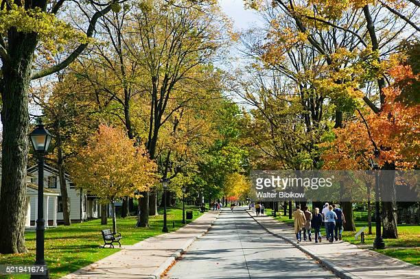 people strolling on sidewalk through neighborhood - ディアボーン ストックフォトと画像