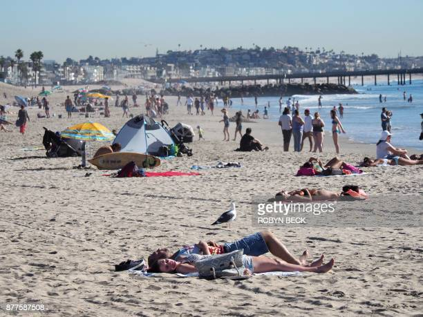 People sun bathe and play November 22 2017 at Venice Beach in Los Angeles California Hot temperatures scorched Southern California breaking heat...