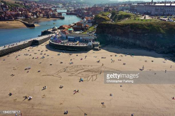 People sunbathe and walk on Whitby beach next to a giant sand art depicting a 50 metre humpback whale and calf filled with plastic as a new report...