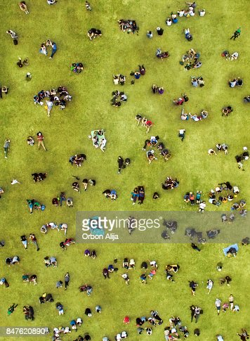 People sunbathing at central park