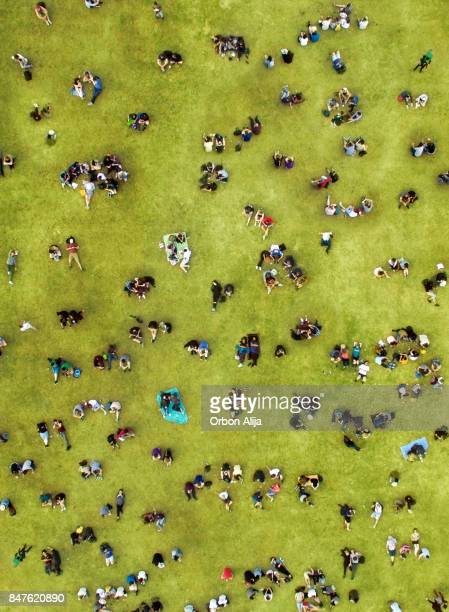 people sunbathing at central park - public park stock photos and pictures