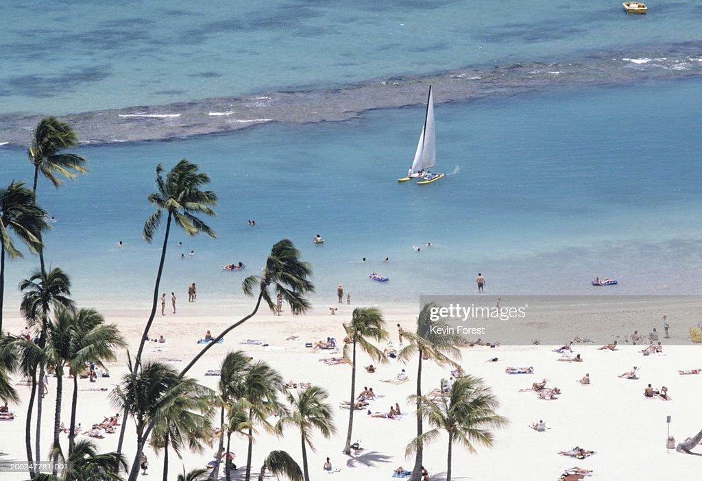 People Sunbathing At Waikiki Beach Hawaii Usa High Res Stock