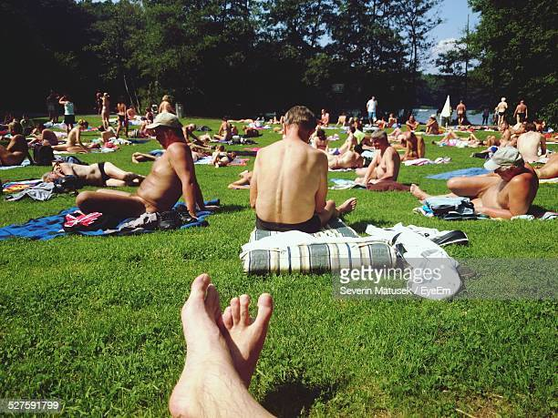 people sunbathing in park - german naturist stock pictures, royalty-free photos & images