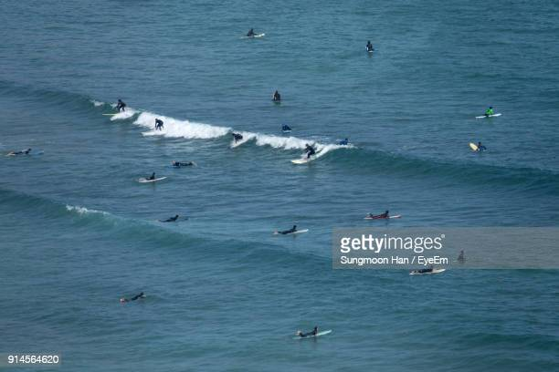 people surfing in sea - jeju island stock pictures, royalty-free photos & images