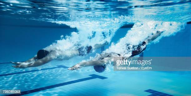 people swimming in pool - swimming stock pictures, royalty-free photos & images
