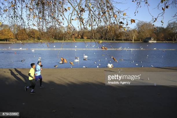 People take for a walk at Hyde Park during the last days of autumn on October 26 2017 in London England