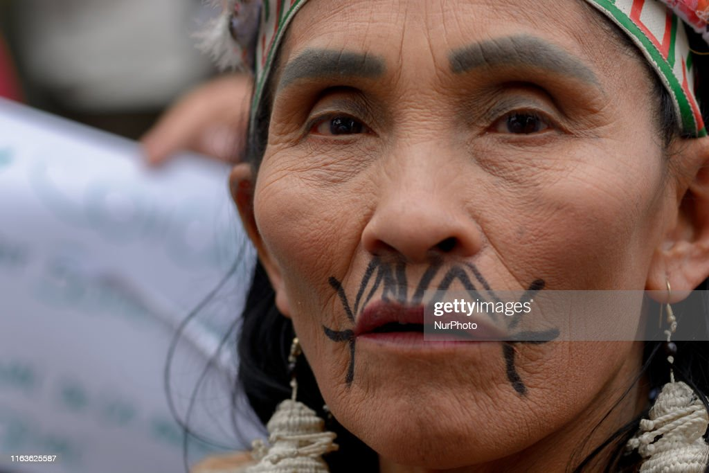 Protest In Bogota In Response To Amazon Rainforest Fires : News Photo