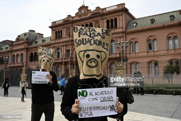 People take part in a protest against the agreement between Argentina and China to produce pig for export, in front of Casa Rosada Presidential...