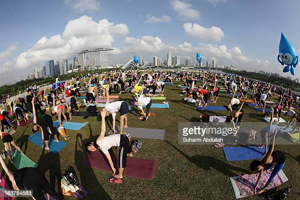 People take part in mass yoga session on the green roof of Marina Barrage in celebration of the Singapore World Water Day on March 16 2013 in...