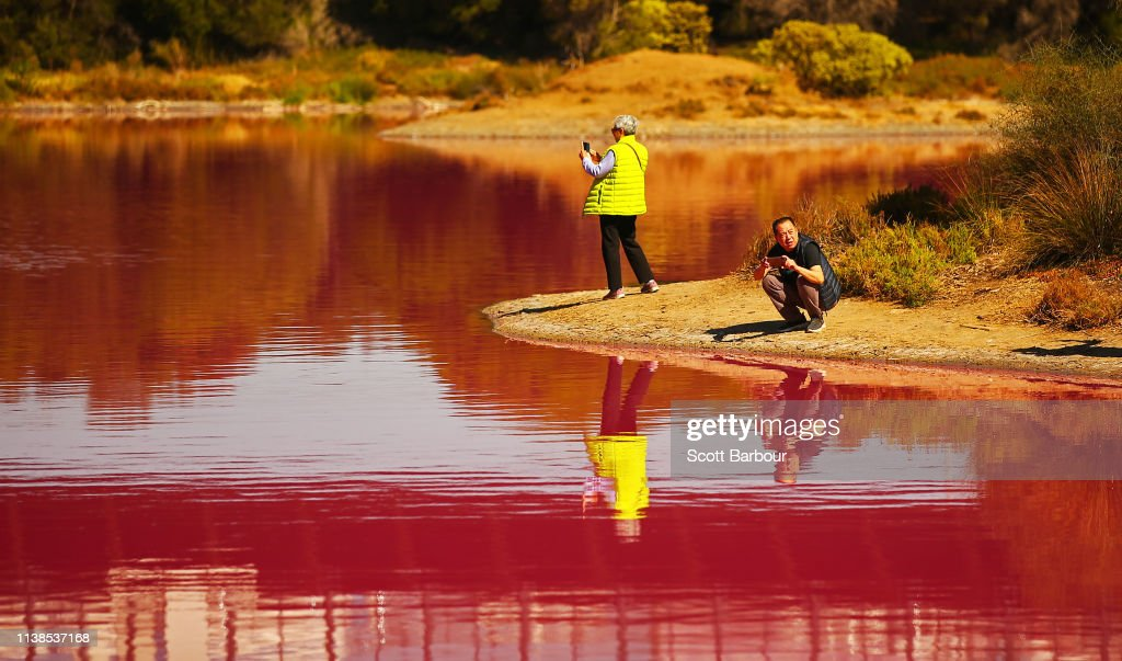 AUS: Melbourne's Westgate Park Lake Turns Pink