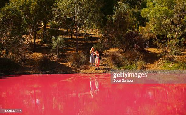 People take photographs of the pink lake at Westgate Park on March 27 2019 in Melbourne Australia The inland lake turns pink in warmer months thanks...