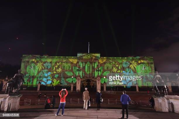People take photos as a rainforest design is projected onto the facade of Buckingham Palace to celebrate Her Majesty Queen Elizabeth II's global...