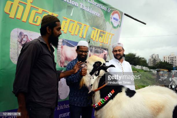 People take pictures with the goat which was sold at Konhwa livestock market for 35 Lakhs ahead of Muslim festival Eid AlAdha on August 17 2018 in...