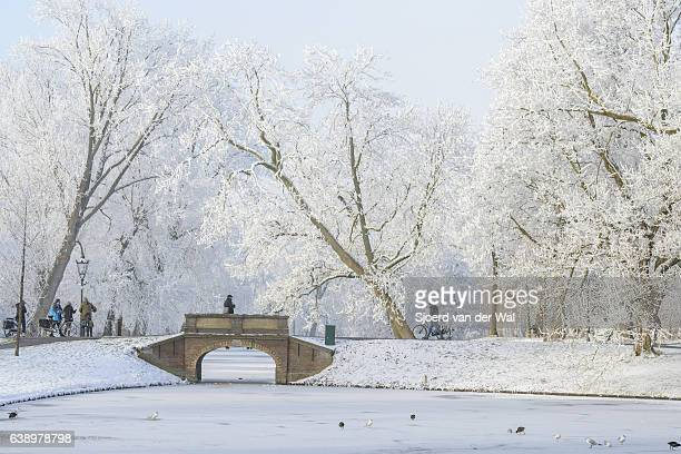 "people taking pictures of the snowy wintry landscape in kampen - ""sjoerd van der wal"" stock pictures, royalty-free photos & images"