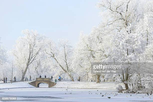 "people taking pictures of the snowy wintry landscape in kampen - ""sjoerd van der wal"" stockfoto's en -beelden"