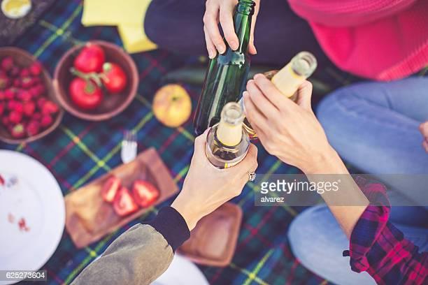 People toasting drinks on picnic