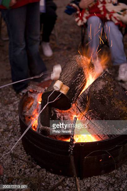 People toasting marshmallows over campfire (blurred motion)