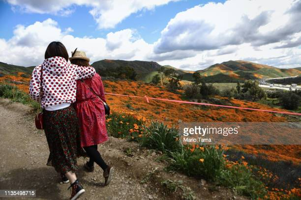 People visit a 'super bloom' of wild poppies blanketing the hills of Walker Canyon on March 12 2019 near Lake Elsinore California Heavier than normal...