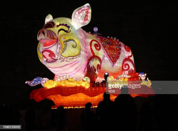 People visit an illuminated lantern featuring a pig at Fuzimiao scenic area prior to the 33rd Qinhuai Lantern Fair to welcome the Chinese New Year...