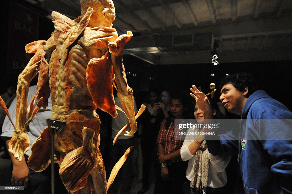 People visit \'Body Worlds\', the anatomical exhibition of real human ...