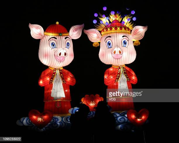 People visit illuminated lanterns featuring pigs at Fuzimiao scenic area prior to the 33rd Qinhuai Lantern Fair to welcome the Chinese New Year the...