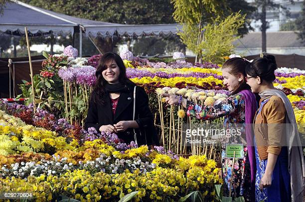 RAWALPINDI PAKISTAN RAWALPIND PUNJAB PAKISTAN People visit the annual Chrysanthemum and Autumn Flowers Show in nawaz shareef park in Rawalpindi...