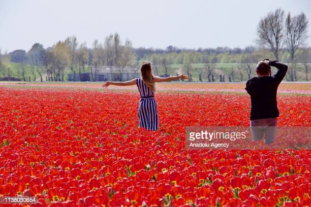 People visit the Keukenhof, one of the world's largest flower and tulip garden in Lisse, Netherlands on April 18, 2019. This year's theme of the...