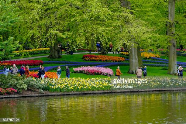 People visit the Keukenhof the world's largest flower and tulip garden park on May 10 2017 in Lisse Netherlands One of the most popular destinations...