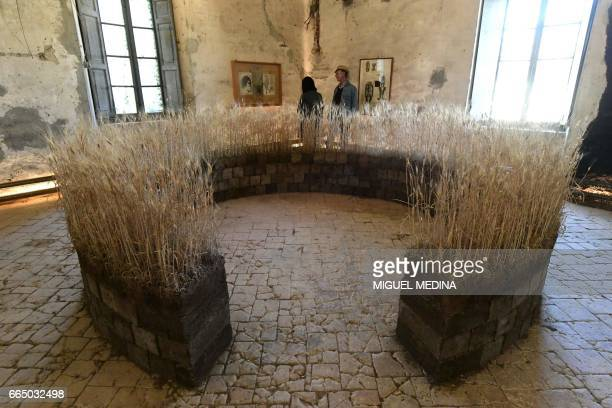People visit the Shit Museum in the Castelbosco castle of Gragnano Trebbiense on march 28 2017 The idea of the Shit Museum founded in 2015 by Italian...