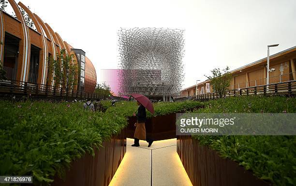 People visit the United Kingdom pavilion of Universal Exposition EXPO2015 on May 1 2015 in Milan Milan's EXPO2015 opens on May 1 with hopes that the...