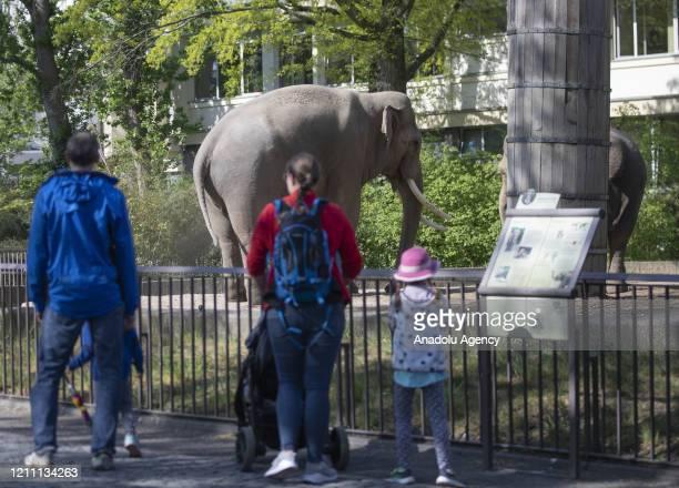 People visit Zoologischer Garten Zoo after coronavirus measures untightened in Berlin, Germany on April 28, 2020. Measures taken on 22 March to...